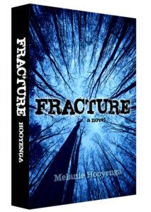 fracture_3d_1000