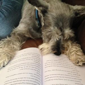 Owen reading